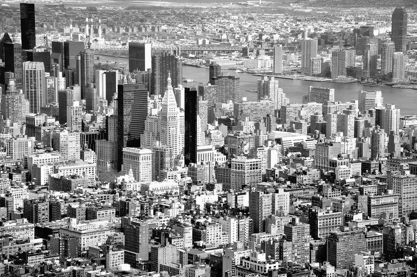 Standing up for the morning sun Urban Landscape New York The Best Of New York Blackandwhite