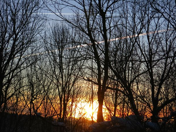 Sunlight ☀ Getting Inspired Wintertime Light And Shadow Onmywaytowork Sunrise_Collection Sunrise...