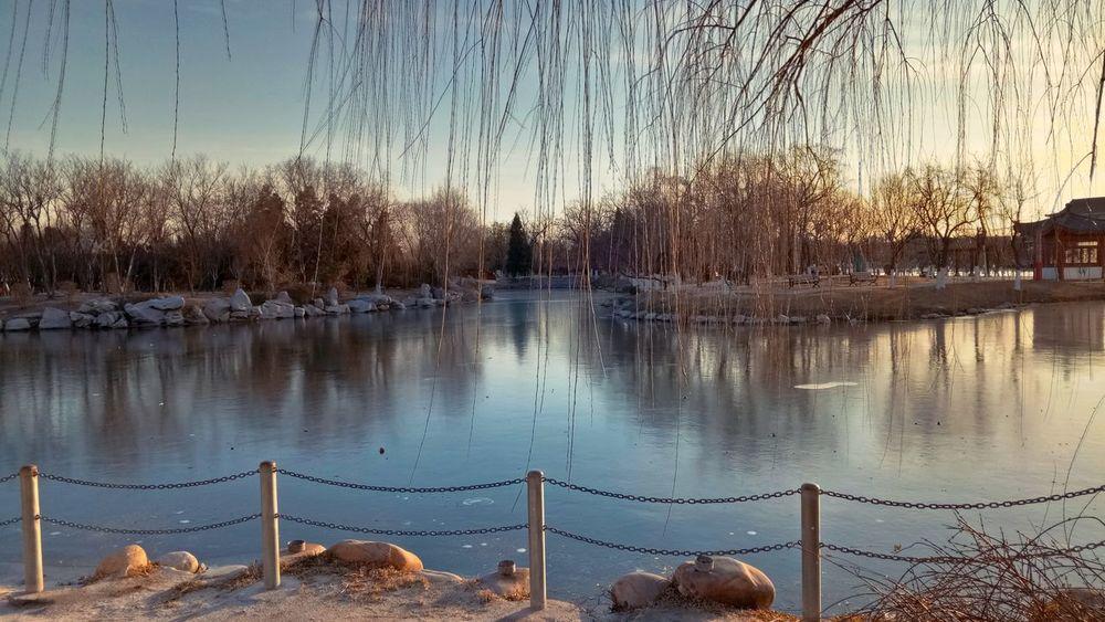 Sunset b Water Reflection Lake No People Nature Sky Tree
