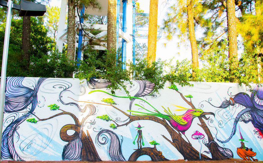 Olharnatural Vitaonatureza Victornatureza Artphotohraphy Graftti Urbanarts Documentaryphotography Docmentaryphotografer Creativity Streetart Fotodocumental Streetphotography Multi Colored Luz Sombra Naturzaurbana
