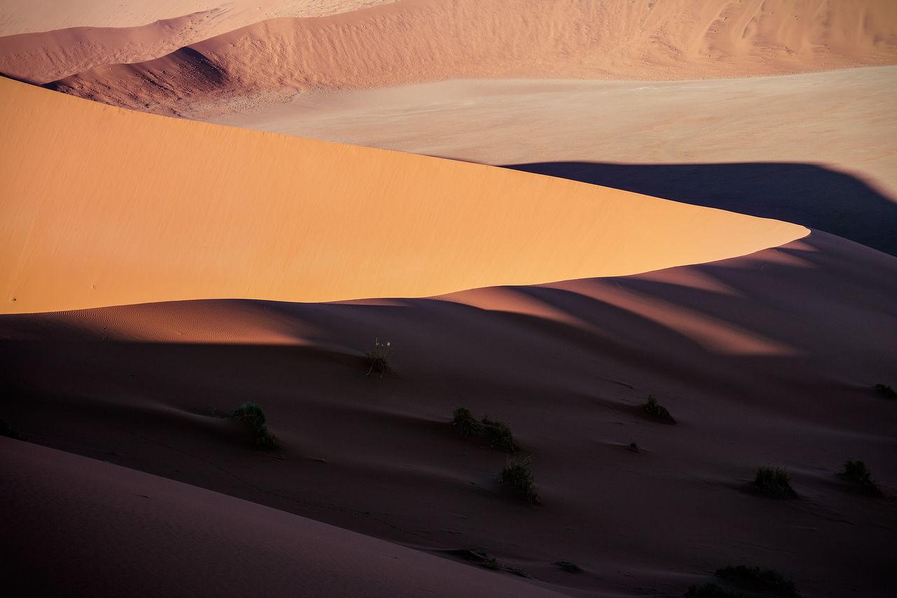Scenic view of sand dune namib desert