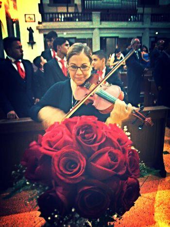 Música y rosas roja. Walking Around violín Flores