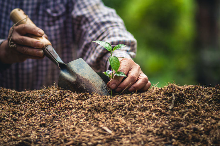 Man working on plant