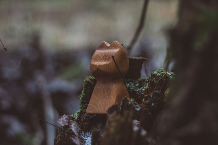 Forest Nature Wood Wood - Material Wooden Toy Toys Tree Cat Wooden Cat Moss Craft Crafts Handmade Selective Focus Close-up Plant No People Day Land Growth Fungus Outdoors Mushroom Brown Timber Bark Focus On Foreground Toadstool