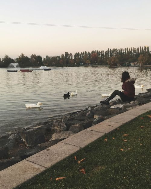 Water Real People Outdoors Sitting River One Person Day Nature Side View Leisure Activity Full Length Animals In The Wild Men Bird Sky People Turkey Eskişehir