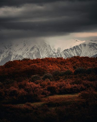 Fiery Hideout Sibiu Romania Explore Discover  Travel Destination Nikon D7500 Astronomy Tree Autumn Mountain Winter Landscape Storm Cloud Dramatic Sky Moody Sky Overcast Thunderstorm Cumulonimbus Dramatic Landscape Romantic Sky Lightning