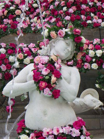 Lyon : Fontaine des Jacobins la fête de la rose