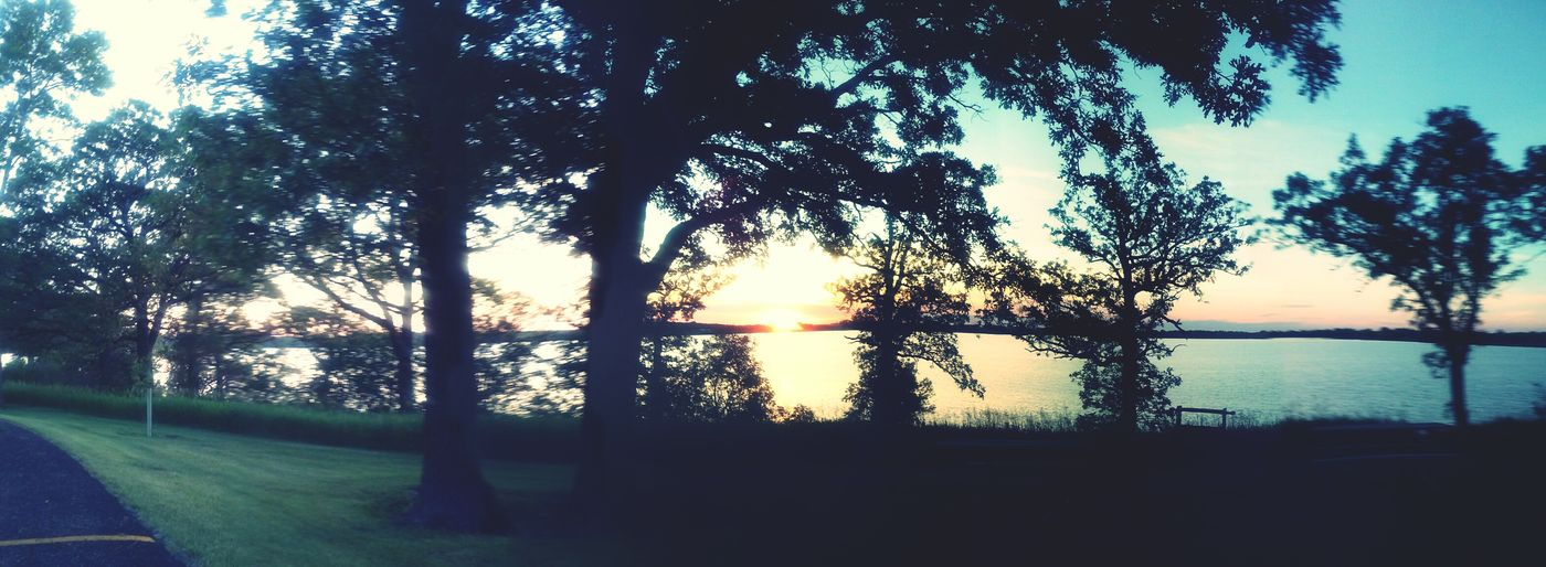 Hugging A Tree Adventures EyeEm Nature Lover A Walk In The Woods Lake HermanLake View Sunset