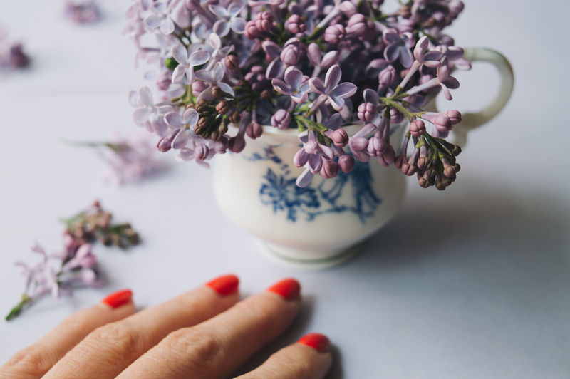 Creativity Decor Woman Body Part Close-up Cup Finger Flower Flower Head Flowering Plant Focus On Foreground Fragility Freshness Holding Human Body Part Human Finger Human Hand Indoors  Nail Nature One Person Plant Purple Vulnerability  Young Adult The Still Life Photographer - 2018 EyeEm Awards The Creative - 2018 EyeEm Awards