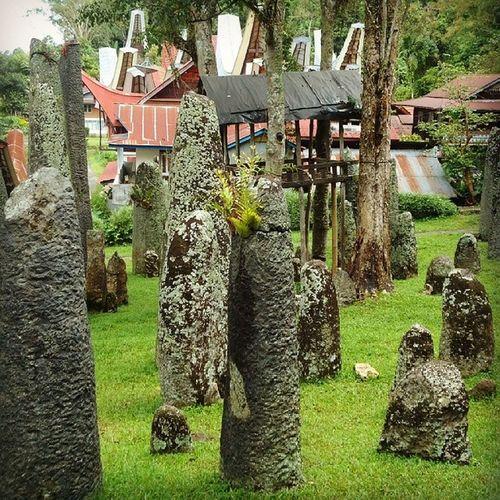 Menhir di Toraja Traditional Travel Sejarah Purbakala