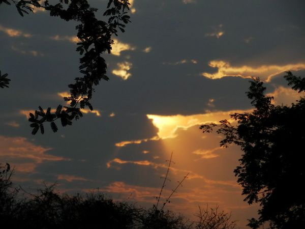 Sun piercing through the clouds. Beauty In Nature Cloud - Sky Clouds Dramatic Sky Nature Nature Nature Photography No People Orange Orange Color Outdoors Rays Of Light Scenics Showing Imperfection Silhouette Sky Skyline Sunrise Sunshine Trees My Favorite Photo