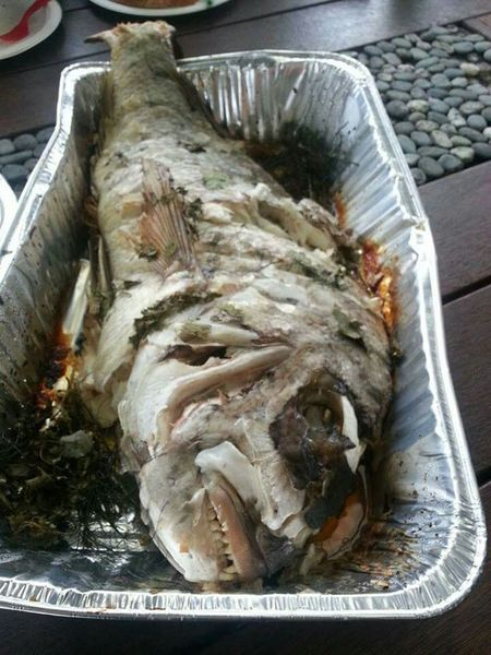 Whole cooked Snapper