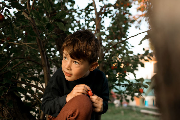 Portrait of boy looking at tree