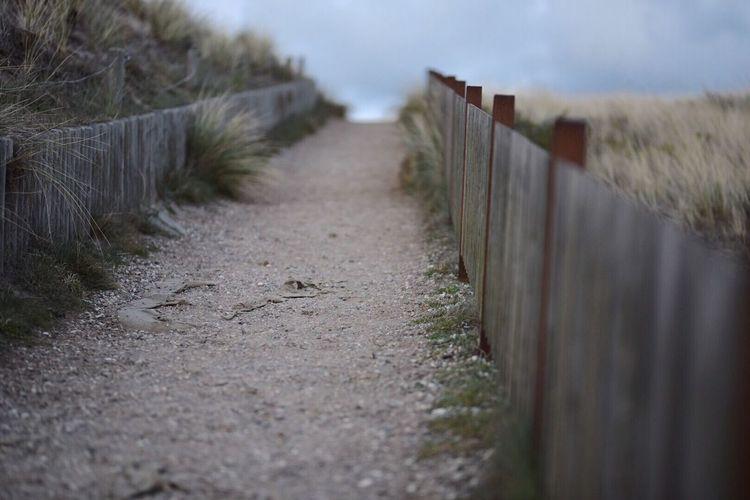 Footpath amidst beach against sky