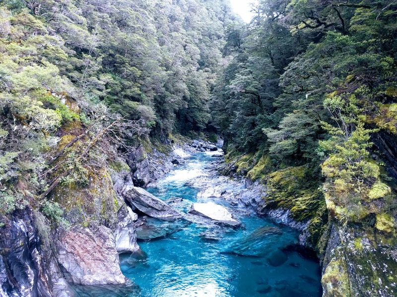 Mt Aspiring National Park, New Zealand Creek Valley Hike National Park New Zealand Valley River Rocks River Water Backgrounds Full Frame High Angle View Close-up Clear Peaceful Calm EyeEmNewHere The Great Outdoors - 2018 EyeEm Awards