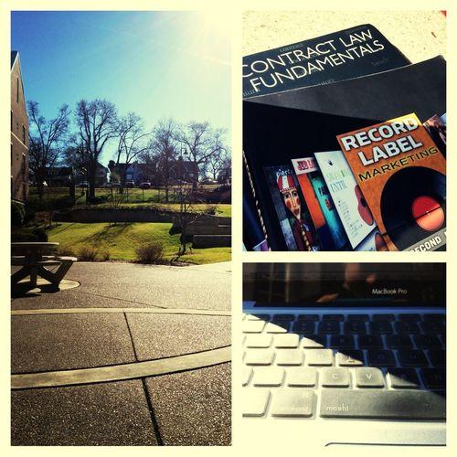 Sunshine And Studying