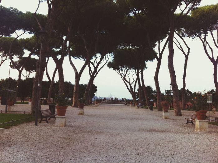 Giardino Degli Aranci Beautiful Nature Enjoying The View