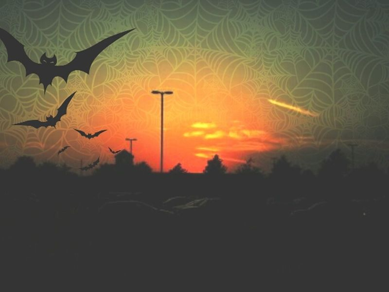 Happy Halloween! The sunset is originally from Keith Feltz. Thanks for your invitation. Collaboration Swap