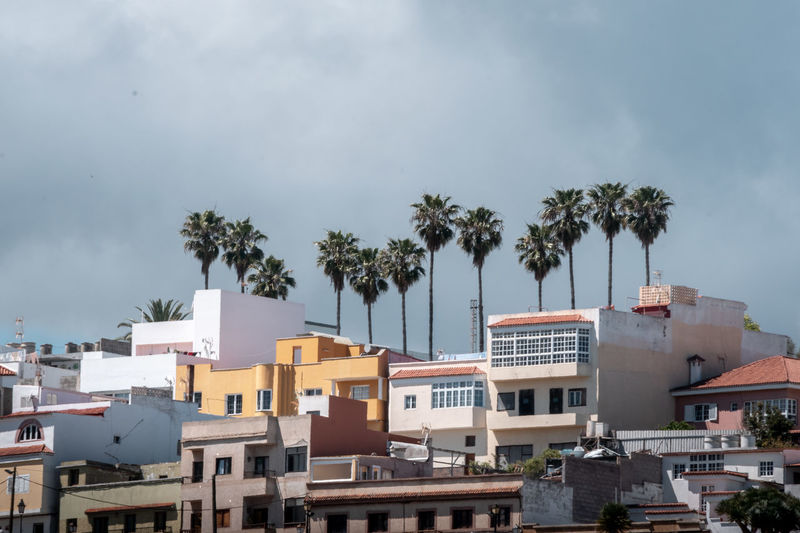 High angle view of palm trees and buildings against sky