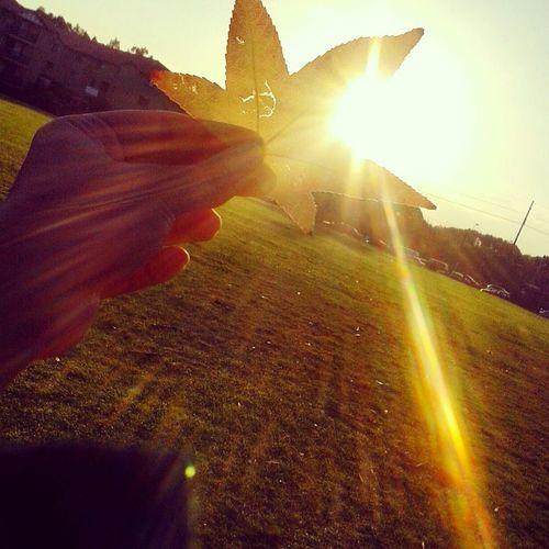 Throw Back Oneofmyoldpic Goodoldtime Sunrise Morning Walk