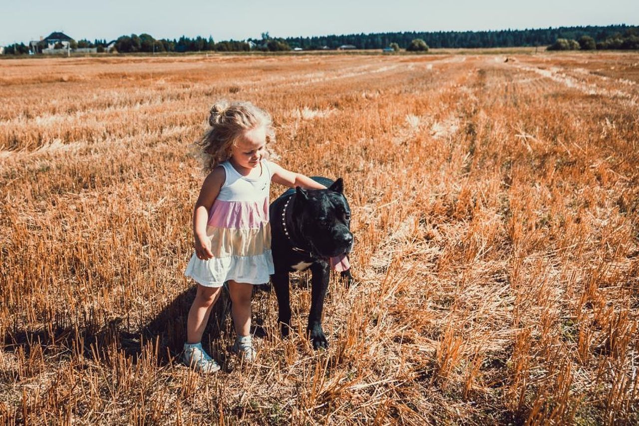 field, one person, land, mammal, domestic animals, domestic, pets, animal, animal themes, child, landscape, one animal, nature, plant, real people, leisure activity, girls, casual clothing, day, hair, outdoors, hairstyle