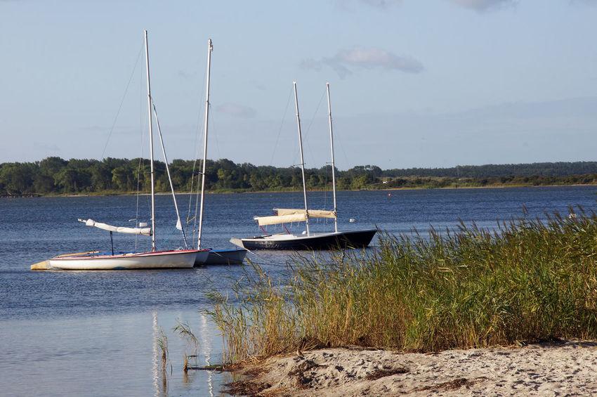 Sailingboats Baltic Sea Enjoying Life Holiday Sailboats Seascape Ship Ships Ships⚓️⛵️🚢 Tourism