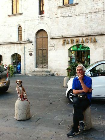 Dog Life Mananddog Life In Motion Lifestyle Photography Italy Italy Holidays