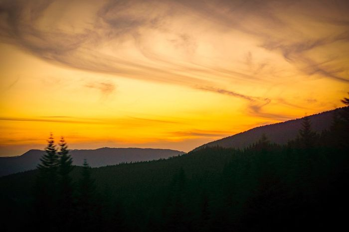 Oregon Sunset Nature Mountain Silhouette Beauty In Nature Tree Sky Scenics No People Landscape Forest Outdoors