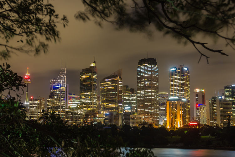 Sydney Skyline Australia Mrs. Macquaries Chair New South Wales, Australia Sydney Skylin View From Mrs. Macquaries Chair Architecture Building Exterior Built Structure City Cityscape Illuminated Lights In The Dark Long Trm Exposure Modern Nature Night No People Outdoors Sky Skyscraper Sydney Sydney Skyline Travel Destinations Tree Water