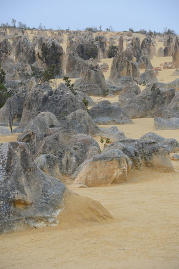 Scenic view of rocks on land