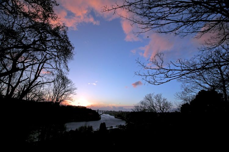 As sun goes down at Douro River... EyeEm Best Shots EyeEm Nature Lover Landscape_Collection River View Shadows And Backlighting Sky And Clouds Sunset_collection Beauty In Nature Down Enchanting Moment Scenics Shadows Sillouettes And Sunsets Trees And Sky