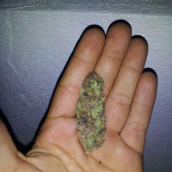 Purplekush Kusharmy 420 Weed buds high BluntNation MuchoPunchline