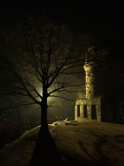 Mystical Atmosphere Mystic Shadows & Lights Shadow Schattenspiel  Schatten Baum No Filter Nofilter Nacht IZoOoM Night Tree Built Structure Spirituality History Bare Tree