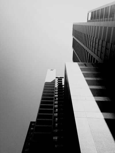 Blackandwhite Lookingup