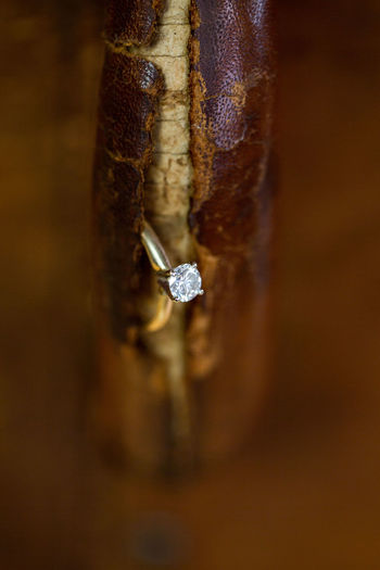 Close-Up Of Diamond Ring In Wood