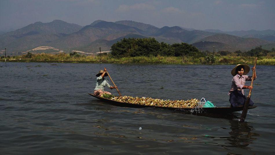 Inle Lake, Shan State, Myanmar NativeGirl Daily Life