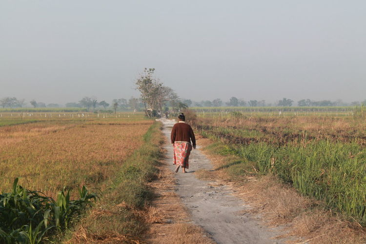 Rear View Of Woman Walking On Road Amidst Agricultural Field Against Sky