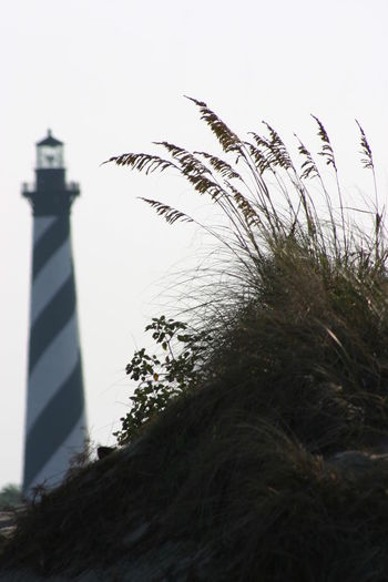 Cape Hatteras Cape Hatteras Lighthouse Focus On Foreground Lighthouse Low Angle View Nature Outdoors Tall - High