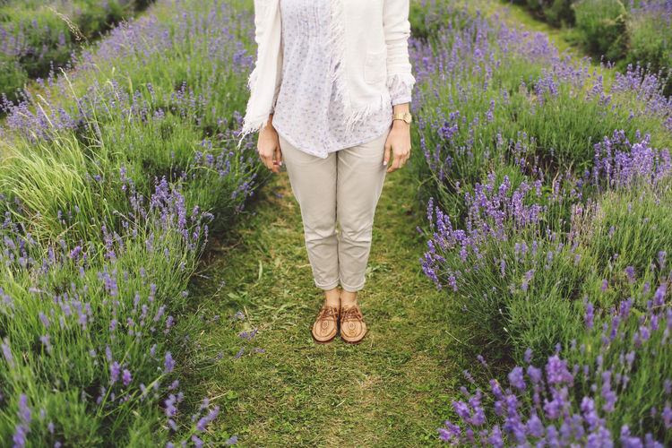 Beauty In Nature Casual Clothing Day Feet Field Flower Grass Grassy Green Color Growth Landscape Lavanda Lavander Lavander Flowers Lavanderfields Leisure Activity Lifestyles LV Nature Outdoors Plant Summer Surrey Tranquil Scene Tranquility Out Of The Box
