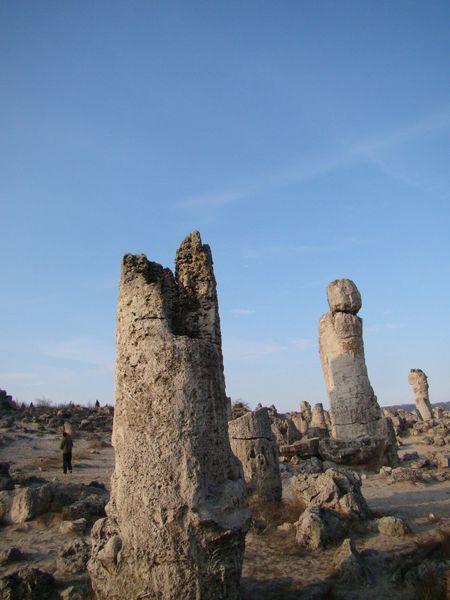 Bulgaria Day Near Varna Outdoors Petrifiedforest Rock Formation Sky Sky_collection
