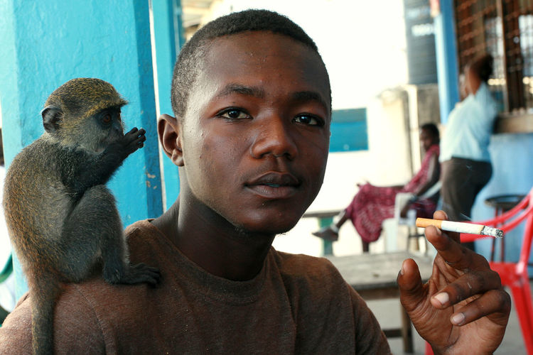Zanzibar, Tanzania - February 16, 2008: Young African man 25 years old, smoking at an outdoor cafe, holding a cigarette, tame baby green monkey sitting on his shoulder, February 16, 2008. A black man with a trained monkey on his shoulder. Africa Zanzibar Tanzania Stone Town Zanzibar Stone Town Green Monkey Portrait Men Looking At Camera Close-up Young Men Animal Wildlife Adult One Person Animal Monkey Ape Chlorocebus Sabaeus Sabaeus Monkey Callithrix Monkey Hand-reared Ape Smoking Pet Monkey; Pet Ape African