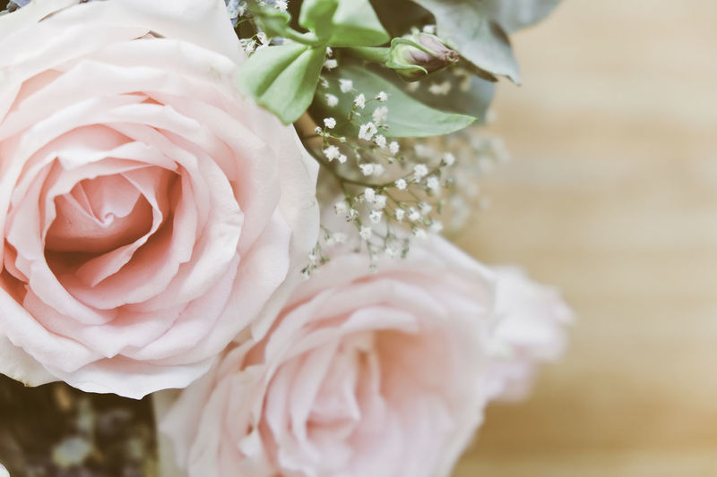 pink rose in a floral bouquet Pink Rose Pink Rose Flower Beauty In Nature Close-up Day Flower Flower Head Fragility Freshness Growth Nature No People Petal Pink Roses Plant Rose - Flower