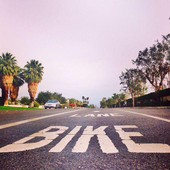 Close up of Bike Lane Bike Lane Road Bike Cycle Path Cycle Bike Friendly Empty Places