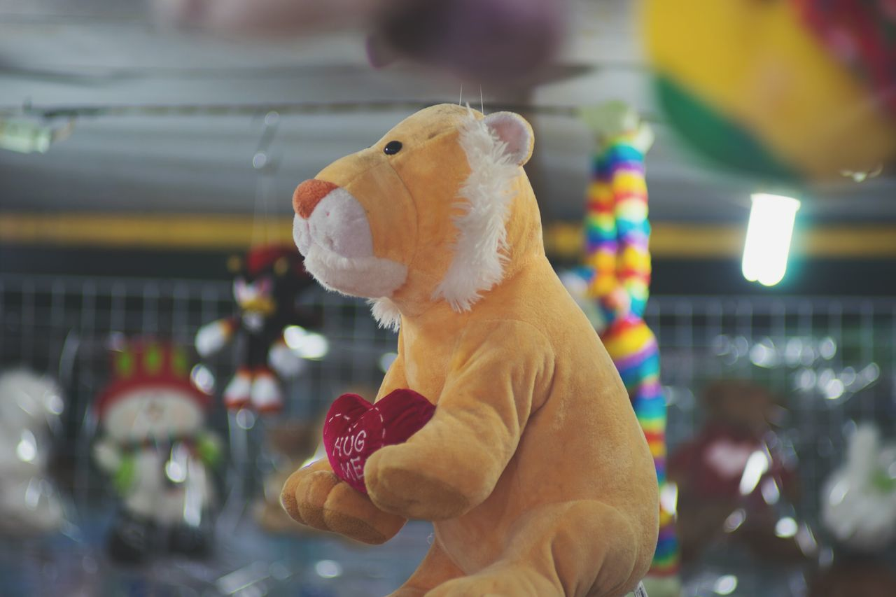 toy, animal representation, stuffed toy, focus on foreground, real people, sweet food, food and drink, food, one person, indoors, day, close-up, human hand, animal themes, mammal, people