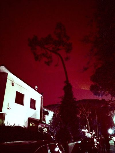 Blood Moon Blood Night Blood Red Sky Night Tree Lonely My Photography Blood Sky Italy Creepy