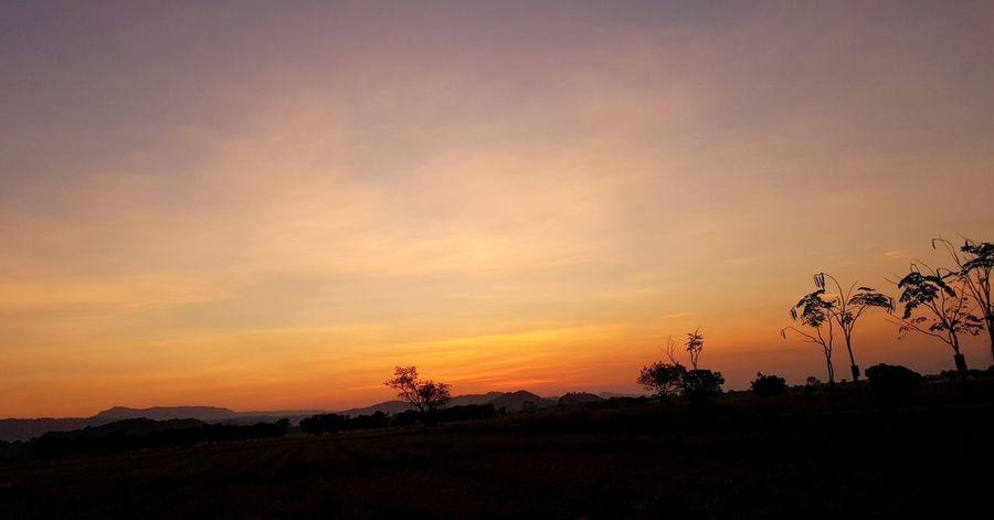 field in morning , กลางทุ่งนาตอนเช้ามืด Nature Field In Morning Tree Sunset Sky Landscape Safari Dramatic Sky First Eyeem Photo