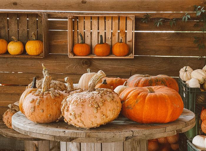 Pumpkins on display at market stall