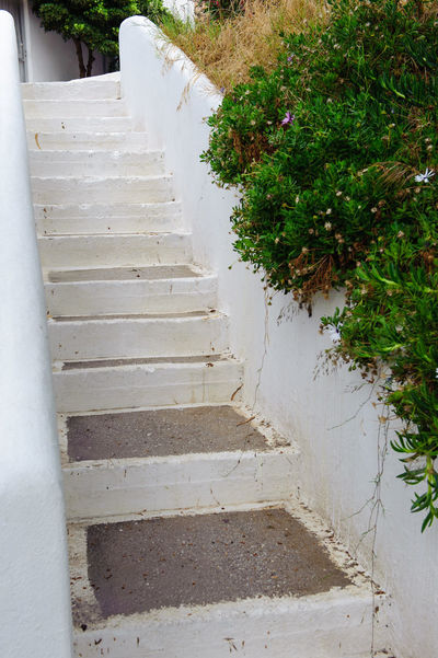 White stairs Architecture Crete Day Nature No People Outdoors Stairs Tree Up White
