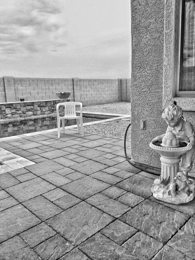 Fraidy Cat Dublin... Pool Dog Swimming Pool Snapseed Poolside Decor Arizona Black And White Monochrome Bw