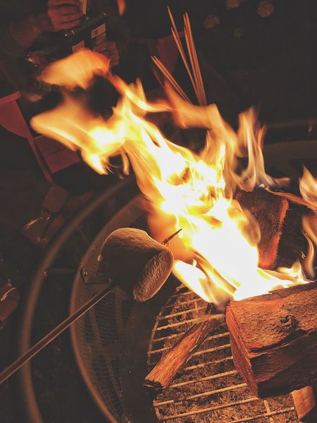 S'mores.... Food Stories Flame Burning Heat - Temperature No People Night Close-up Outdoors Food Fire Pit Animal Themes S'mores Smores Fire